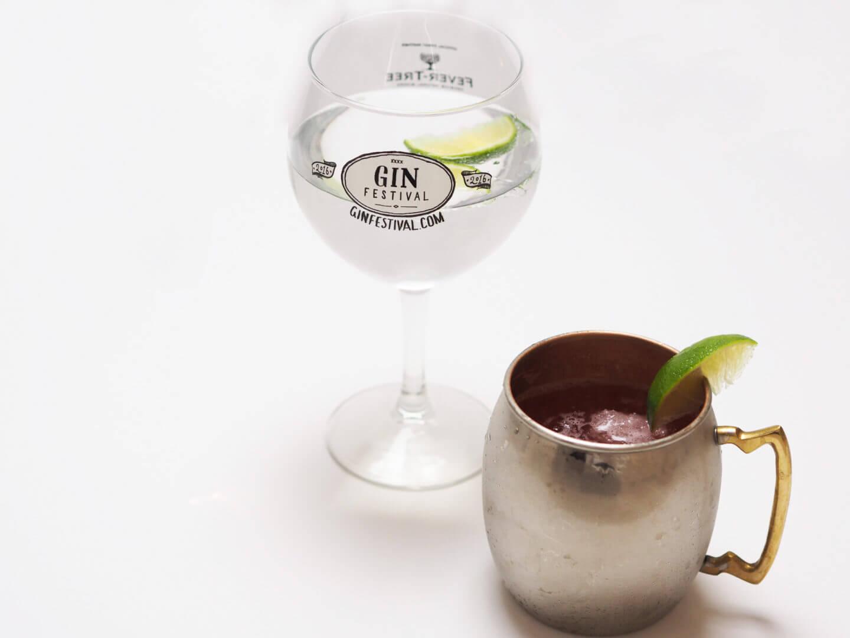 Gin Explorer January Box Review